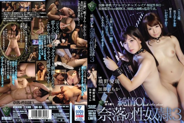 |RBD-954| Pure Business Woman Becomes A Slut 3 Airu Hashino Momoka Kato office lady lesbian anal hi-def